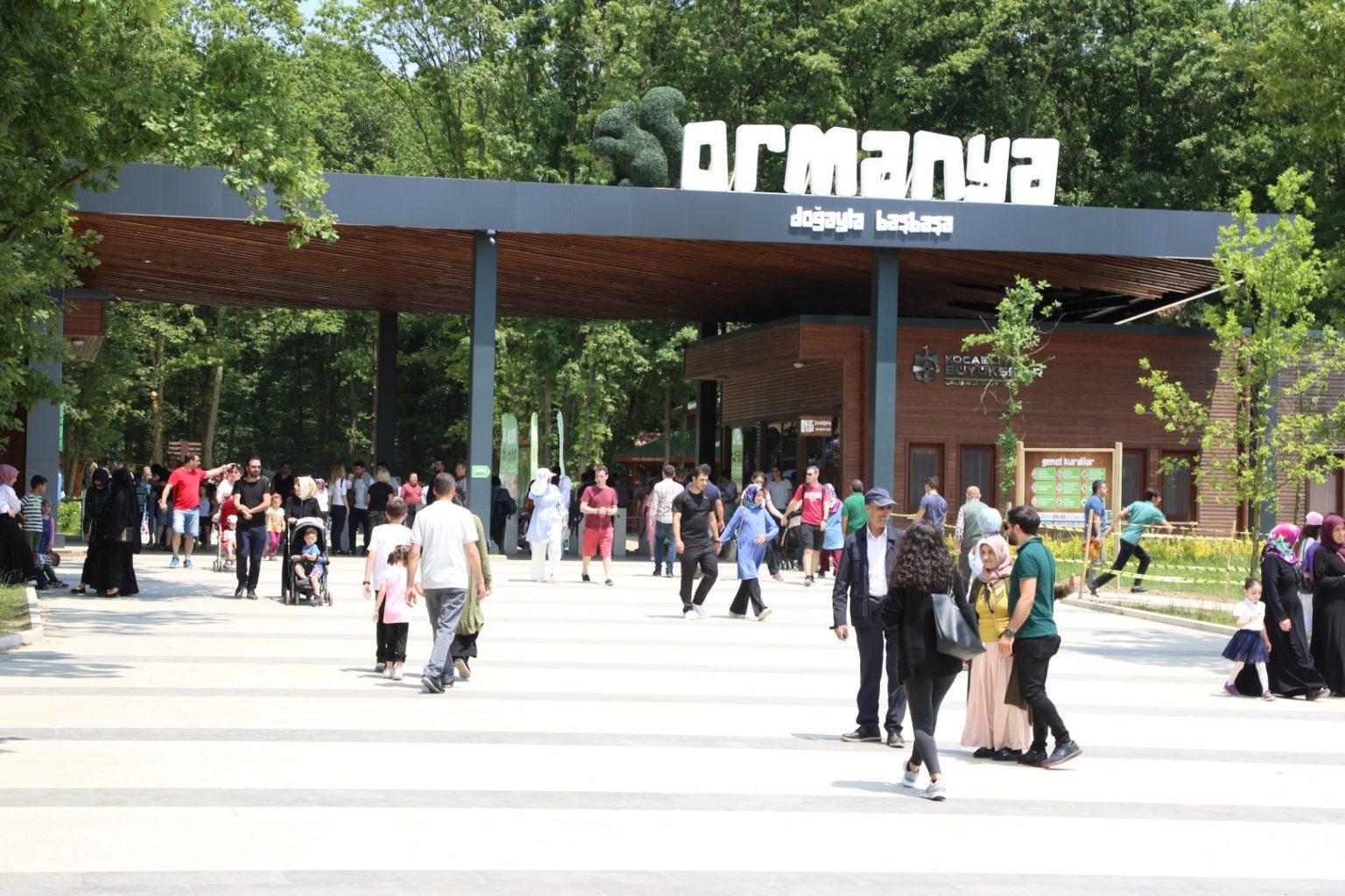 ormanya 1