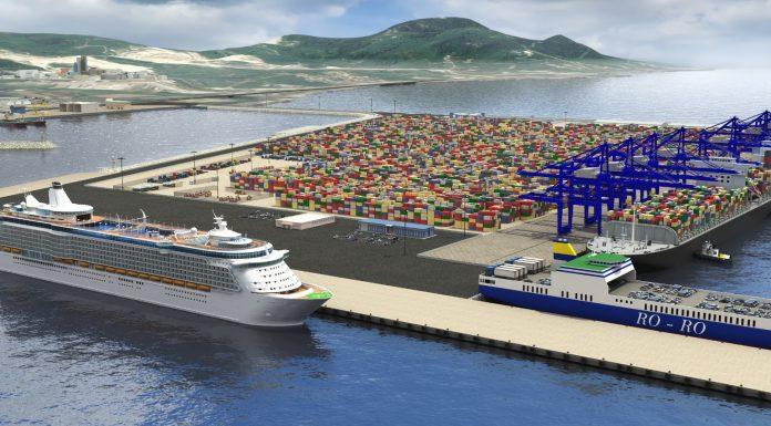 nye Port Türkiyeyi lider yapacak