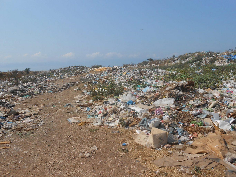 Hamitler çöplüğü 2