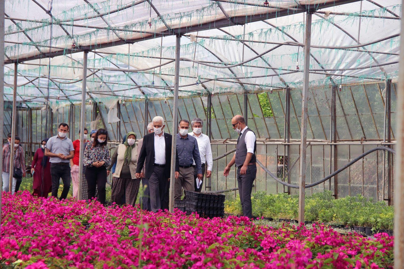 Muğla çiçek üretim merkezi oluyor 2