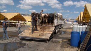Kurbanlıklar çadırları doldurmaya başladı - ozelkalem.com.tr