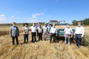 Nilüfer'de hasat zamanı - ozelkalem.com.tr