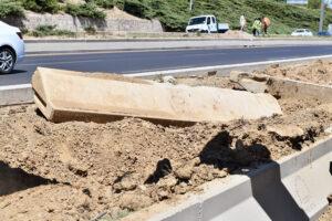 Ağaçların kuruma nedeni susuzluk değil beton!