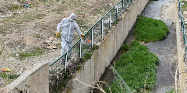 Sivas Belediyesi Veteriner İşleri Müdürlüğü ekipleri tarafından şehrin tamamında sivrisinek ve haşerelerin larvalama noktalarına ilaçlama çalışması başlatıldı.