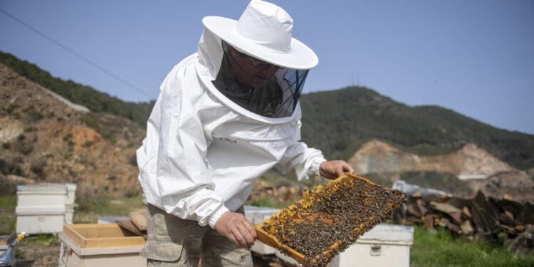 arı yetiştiricileri, Büyükşehir'in sağladığı desteğin kendilerine can suyu olduğunu vurguladı.