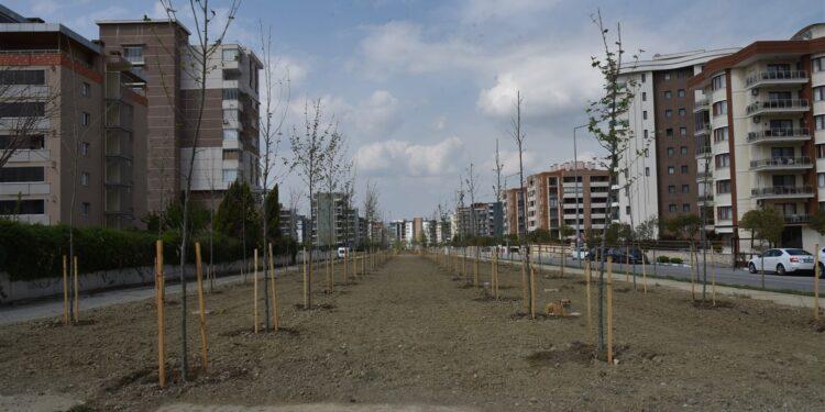 Manisa Büyükşehir Belediyesi'nde, Başkan Cengiz Ergün'ün 2021 yılı için koyduğu 250 bin metrekarelik peyzaj hedefi tamamlanmak üzere.