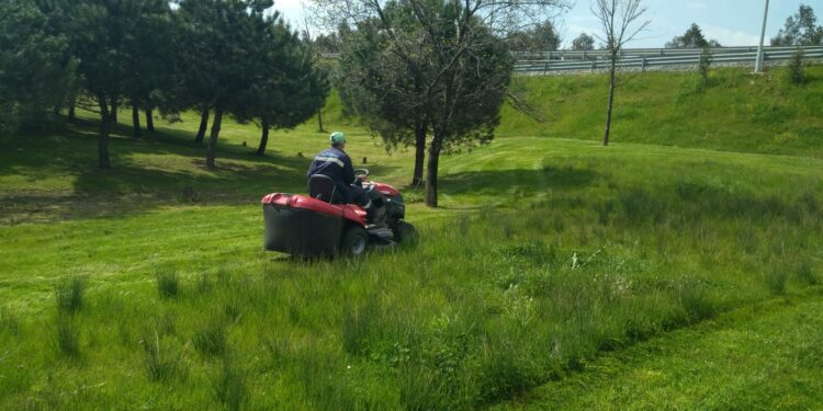 Kocaeli Büyükşehir Belediyesi Park ve Bahçeler Daire Başkanlığı ekipleri, Gebze bölgesindeki yeşil alanlarda ot biçimi ve çevre düzenleme çalışması yapıyor.