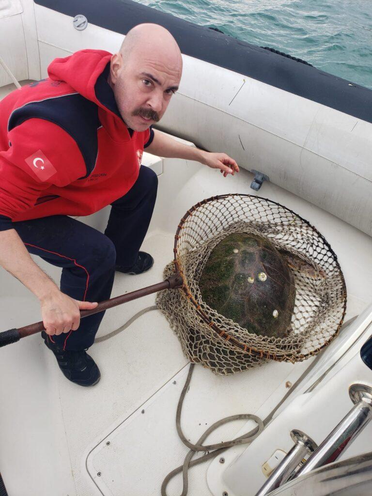 İzmir Büyükşehir Belediyesi İtfaiyesi'ne bağlı dalgıç ekibi Güzelbahçe açıklarında yaralı halde görülen Caretta caretta türü bir deniz kaplumbağasını hızlı bir kurtarma operasyonuyla hayata döndürdü.